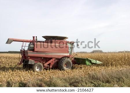 Corn Harvesting combine in the field - stock photo
