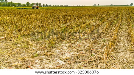 Corn has been harvested