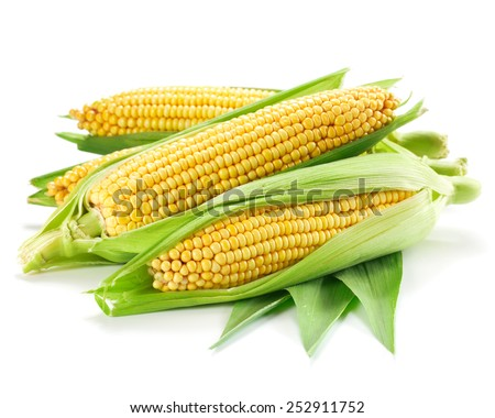 Corn isolated on a white background. Clipping Path  - stock photo