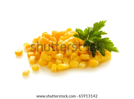 corn isolated on white - stock photo