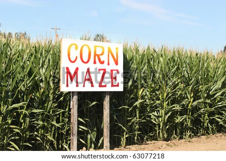 Corn Maze sign on autumn cornfield - stock photo