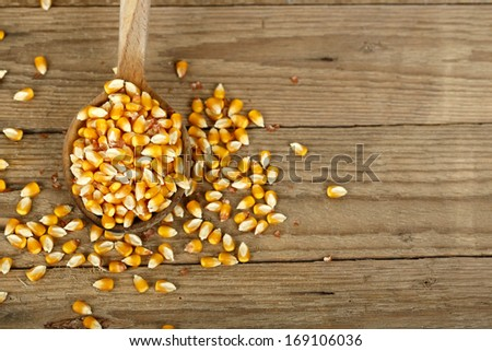corn on wooden ladle against wood  - stock photo