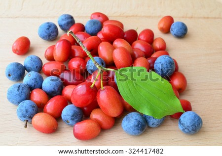 Cornelian cherries or Cornus mas and sloes or Prunus spinosa, mixed on the table, view from above - stock photo