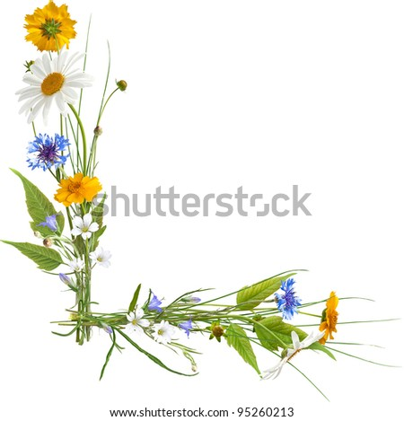 Corner composition from summer flowers isolated on white - stock photo