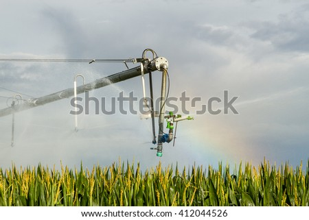 Cornfield and irrigation system. - stock photo