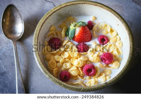 Cornflakes with milk and berries in ceramic bowl in day light - stock photo