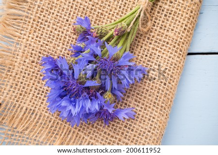 Cornflower on wooden background. Studio photography. Eco flowers.