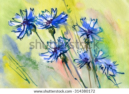 Cornflowers on a colored background. Watercolor. - stock photo