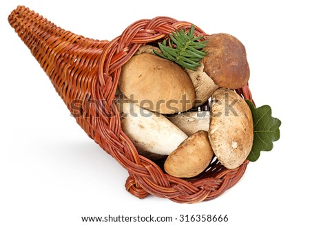 cornucopia filled with ceps isolated on white background - stock photo