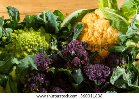 Cornucopia of vegetables from the brassicaceae family: yellow cauliflower, purple sprouting broccoli, cabbage leaves, Romanesco cauliflower with its beautiful fractal shapes. - stock photo