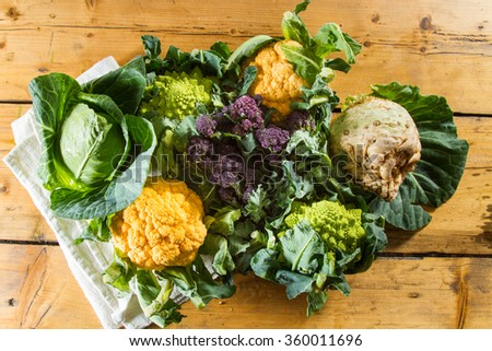 Cornucopia of vegetables from the brassicaceae family: yellow cauliflower, purple sprouting broccoli, cabbage, swede, Romanesco caulliflower with its beautiful fractal shapes. - stock photo