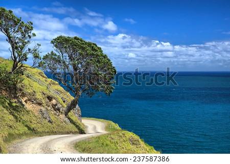 Coromandel Peninsula, New Zealand - stock photo