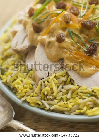 Coronation Chicken and Rice Salad - stock photo
