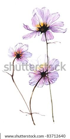 Cosmic flower 3 - stock photo
