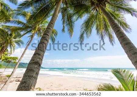 Costa Rica, Playa Santa Teresa, sunset on the beach, surfers - stock photo