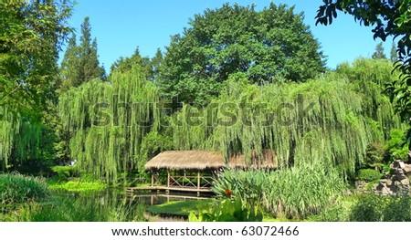 cosy Spa paradise in green - stock photo