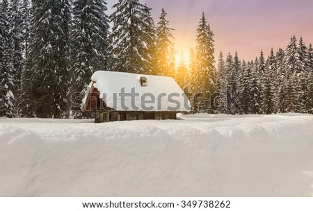 Cosy winter scene with snow covered trees in the mountains in Slovenia - stock photo