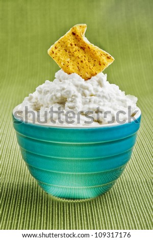 Cottage Cheese and a baked chip - stock photo