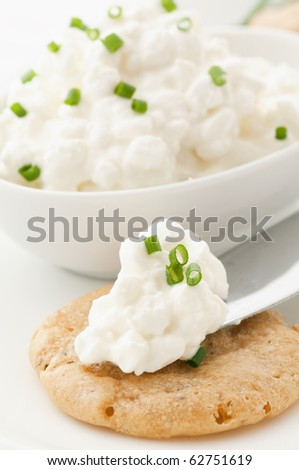 Cottage Cheese on a Cracker - stock photo