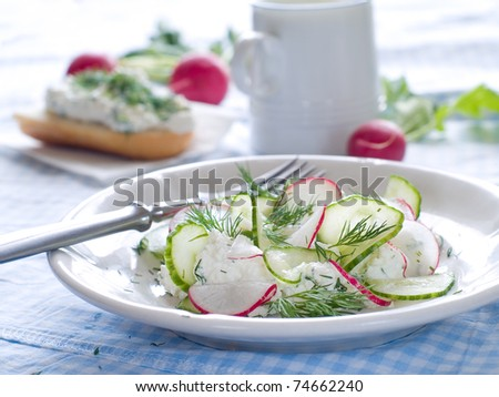 Cottage cheese with fresh cucumber and radish for healthy breakfast - stock photo