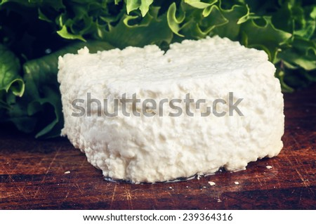 Cottage cheese with walnut on wooden table close up