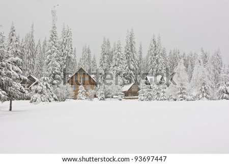 Cottage in romanian mountains - stock photo