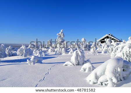 Cottage on a mountain slope in winter, with rabbit tracks in snow in the foreground - stock photo