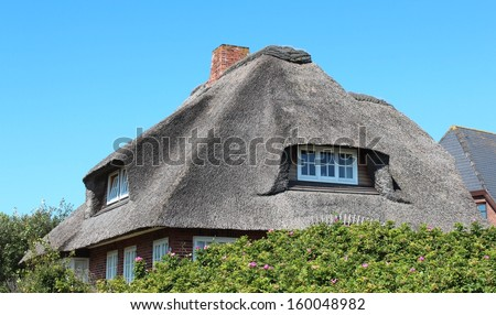 cottages with thatched roof - Thatched Rood