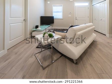 Couch, sofa in the nicely decorated family, living room in front of the TV set. Interior design. - stock photo