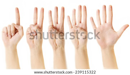 Counting from one to five with fingers, Hands, fingers and numbers on white background