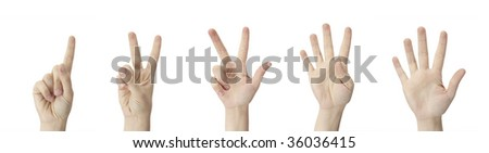 Counting Hands from one to five on a white background - stock photo