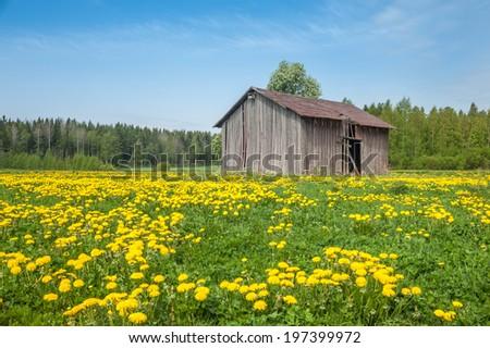 Country Barn - stock photo