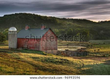 Country Barn - dawn with cows and mist - stock photo