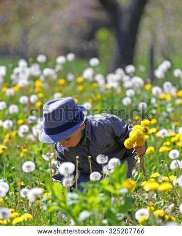 Country boy picking dandelions - stock photo