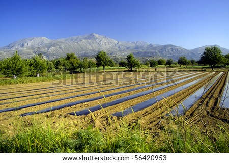 Country farming scene in Crete with mountains in the background, Greece - stock photo