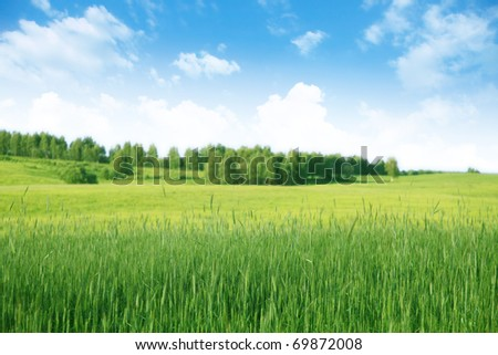 Country landscape. - stock photo