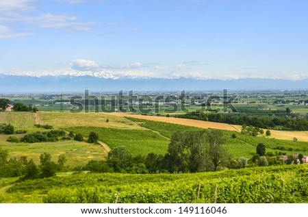 Country landscape of Monferrato (Asti, Piedmont, Italy) at summer, with vineyards - stock photo