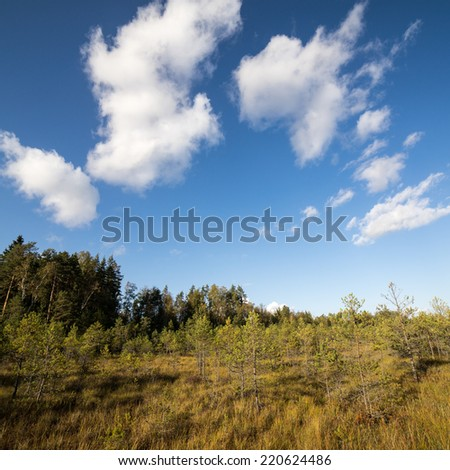 Country landscape under morning sky with clouds. Overcast sky before storm.