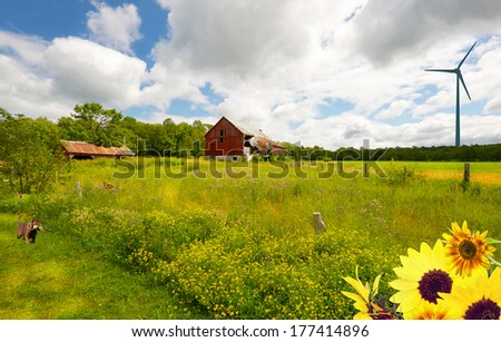 Country landscape. Wide angle summer farm with flowers, a puppy in the foreground looking at a butterfly, and a wind turbine in the distance.  - stock photo
