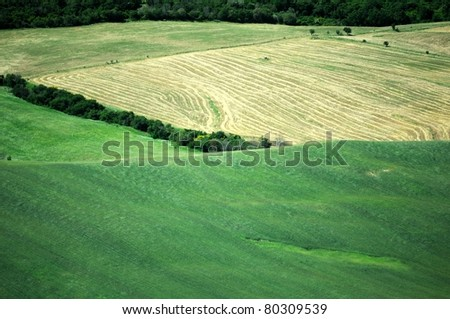 country landscape with a green field