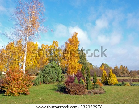 Country landscape with trees and decorative plants and bushes in bright golden colors.        - stock photo