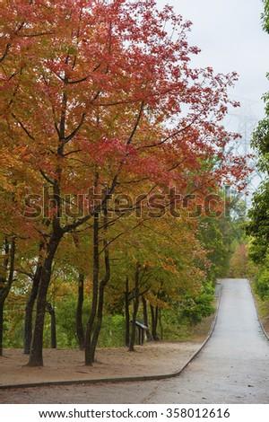 Country park in Yuen Long, Hong Kong in autumn season - stock photo