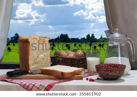 Country products - milk in the glass eggs in a basket, fresh white bread, a jug of milk and a bowl of red berries, cranberry. Still against the window. Outside, pzelenoe field cows - stock photo