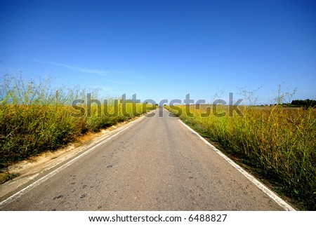 country road - stock photo