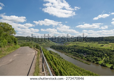 Country road and Vineyards along German river Moselle near Zell - stock photo