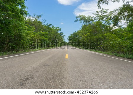 Country road / Asphalt road through the tree clouds on blue sky in summer day / Forest road / Driving on an empty road /  - stock photo