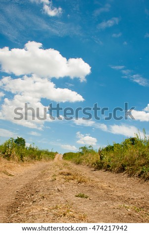 Country road disappearing into the sky with white clouds summer day