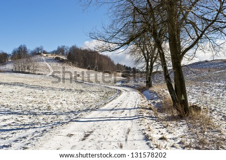Country road during the winter