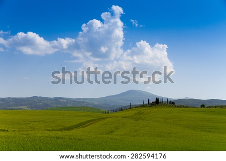 country road flanked with cypresses near San Quirico d'Orcia in Tuscany, Italy