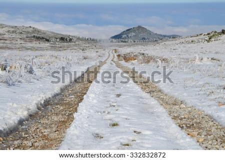 Country Road High in Vitosha Mountain - stock photo